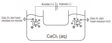 Contoh Soal Elektrolisis 1