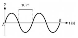 Contoh Soal Gelombang Transversal & Longitudinal